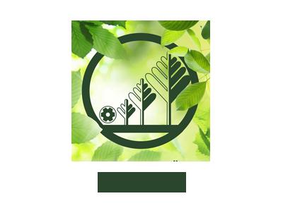 Всероссийский научно-исследовательский институт лесоводства и механизации лесного хозяйства